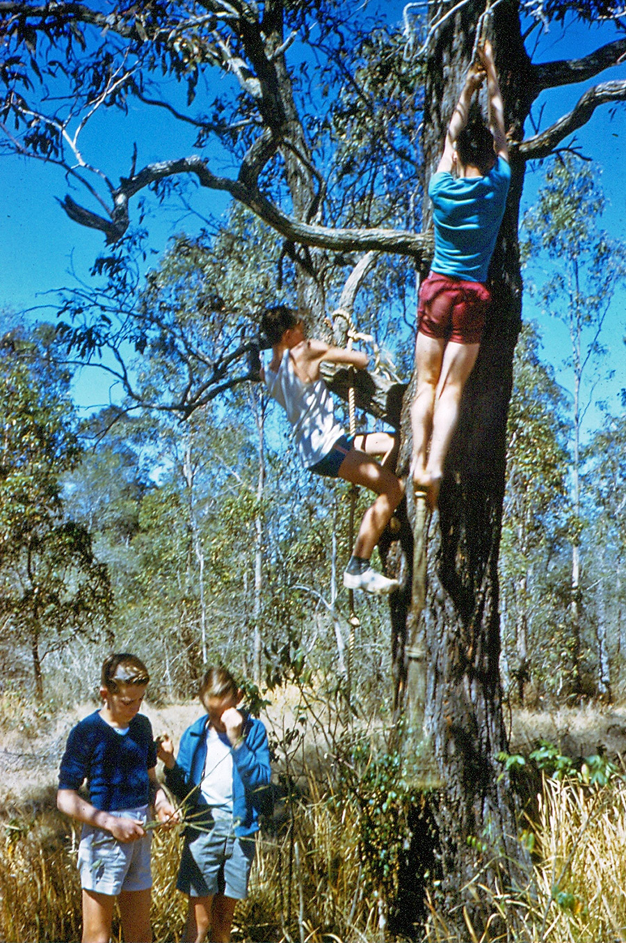 Camp-Warrawee---Leadership-Training-in-Fitness